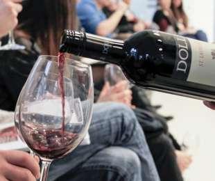 Wyjątkowe szkolenie oraz degustacja win Dolle!